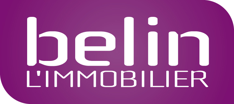 https://www.traiteur-biarritz.fr/img/img/logos-clients/logo-belin-immobilier.jpg